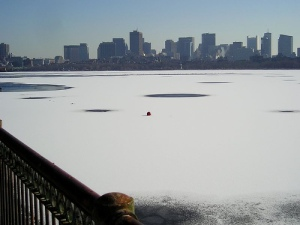 Frozen Charles River